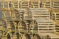 Stock photo of a pile of real Lobster traps