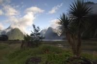 One of the only road accessible Fiords is Milford Sound, found in Fiordland National Park of New Zealand.