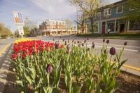 The flowers lining the main street of Niagara on the Lake adds to the scenery in this beautiful town on the shores of Lake Ontario, Canada.
