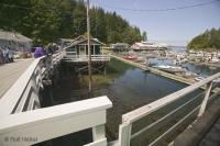 Telegraph Cove is a must see during a Northern Vancouver Island Vacation