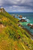 An iconic location featuring a steep headland at the northern end of the Catlins on the South Island of NZ, Nugget Point gets its name from the numerous rock formations at the base of the headland.