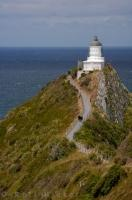 A path high above the water on steep rock formations, takes visitors out to Nugget Point Lighthouse on the South Island of New Zealand.