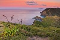 A beautiful landscape photo taken from Cape Reinga at the tip of the North Island of New Zealand as the sun sets and beautiful hues light the evening sky over the rugged Pacific coastline.