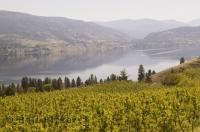 A wonderful wine region and vacation destination, the Okanagan is a rich area located in interior British Columbia, Canada.