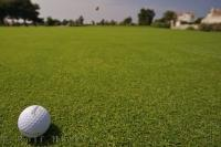 A golf ball sits on a green awaiting its destiny on the Oliva Nova Golf Course in Valencia, Spain in Europe.