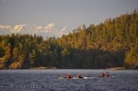 Four people kayaking waiting patiently in the waters off Northern Vancouver Island in British Columbia for the Orca to pass by.