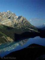 Peyto Lake in Banff National Park, Alberta at early morning on a beautiful perfect Rocky Mountain day