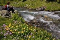 Wildflowers blossom along the banks of the River Varrados in the Val d'Aran in the Pyrenees in Catalonia, Spain as a woman takes a breather from her hiking adventure.
