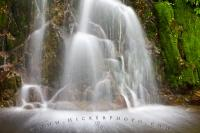 Rainforest Flowing Cascading Waterfall British Columbia