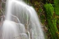 Rainforest Waterfall Pristine Scenery