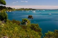 Rangaunu Bay in Pukenui, New Zealand is a large mouth bay where boats take pleasure in docking for a day or two.