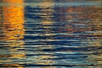 Colorful orange reflections of light on water ripples and little waves during a colorful sunset on the Pacific Ocean off the Vancouver Island coast in british Columbia, Canada