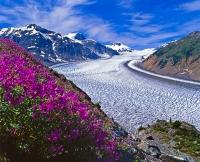 Salmon Glacier Scenery British Columbia