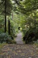 San Josef Bay Track