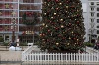 A Christmas tree picture situated in the downtown core of San Francisco in California, USA that makes the spirit of Christmas alive.
