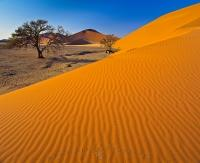 Sand Dunes at Sossusvlei Namib Naukluft National Park Namibia
