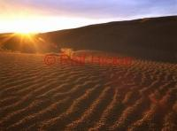 Sand Dunes in Saskatchewan at sunset