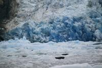 The Sawyer Glacier is part of the Tongass National Forest in Tracy Arm, Alaska