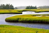 A scenic river channel is fringed by vivid green grass which lines the banks of the river. This landscape picture is taken in Clark's Harbour on Cape Sable Island in Nova Scotia, Canada.