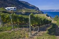 Situated on an elevated lot Bonitas Winery located in Summerland, has a scenic overview of Okanagan Lake.