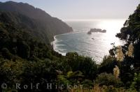 Covered in lush greenery and blossoming flowers, the steep cliff heads straight down into the Tasman Sea along Glacier Highway on the South Island of New Zealand.
