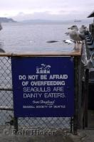 A funny sign and seagulls next to the famous Ivar's Fish and Chips on the waterfront of Seattle, Washington.
