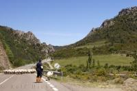 Sheep Valley Anso Aragon Spain