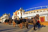 The sightseeing horse and buggy tours sit outside the Plaza de Toros de la Maestranza in the City of Sevilla in Andalusia, Spain waiting for passengers.