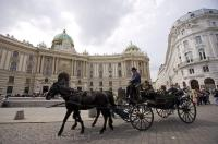 A beautiful way to do some sightseeing in Vienna, Austria is to book one of the tours aboard the horse and buggy rides.