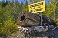 The compatibility of this funny sign, taken near Port Hardy, to the condition of the back roads of Vancouver Island is very fitting.