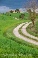 A single lane dirt road meanders across the country landscape in Tuscany in the Province of Siena in the Region of Tuscany, Italy.