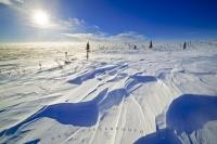 Icy sold winter landscape with hard pressed snow wind drifts along the James Dalton Highway in Alaska, USA.