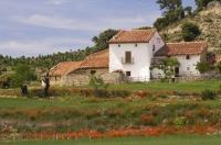 This picturesque Spanish farmhouse near the village of Morella in Valencia, Spain is surrounded by wheat fields and poppies and a sense of well being.