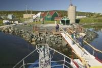 The dock from which Northland Discovery Boat Tours leave from in the St Anthony Harbour in Newfoundland.