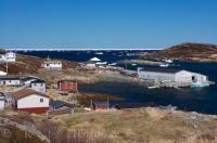 The harbour of St Juliens in Newfoundland, Canada is calm and quiet but just beyond the entrance, all you can see is masses of pack ice floating freely.