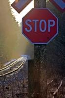 This stop sign is posted by the side of the railway tracks and in this picture you can see the light fog and the light snow with the sun glinting in the background. This was taken during winter near Beaver Cover on Northern Vancouver Island.