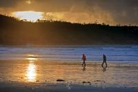 An invigorating way to enjoy the sunset on a stormy evening is taking a walk along one of the many coastal shores near Tofino. During the winter months, the waves roll in off the Pacific Ocean and crash against the shores creating a grand spectacle.