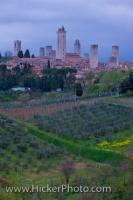 Tourist Attraction San Gimignano Siena Tuscany Italy