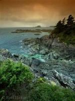 Rugged coast near popular travel destination Tofino on Vancouver Island.