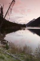 When you travel through BC, Canada be sure to include Duffy Lake as a place to stop for fishing, camping, or picnicing.