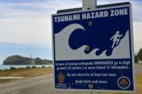A Tsunami warning sign stands along the waterfront of Castlepoint in Wairarapa on the North Island of New Zealand.