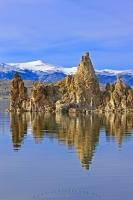 Slight ripples on the surface of Mono Lake distort the reflection of a tufa tower. Above the water line is a clear view of the snowcapped Mountains of the Sierra Nevada.
