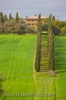 A grand villa on a large estate set in the beautiful scenic Tuscan countryside in the Siena Province of the Tuscany, Italy.