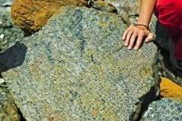 A slab of ultramafic rock called Peridotite lays exposed to the elements along the Tablelands trail in Gros Morne National Park, Newfoundland.