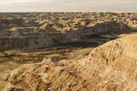 Dinosaur Provincial Park is an interesting travel destination in Alberta, Canada and was established as a UNESCO World Heritage Site in June 1980.