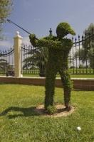 A manicured statue is teeing off outside the Oliva Nova Golf Course in Valencia, Spain in Europe.