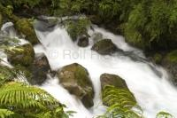 Stock photo of Water Landscapes, Hollyford Road New Zealand