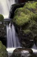An interesting perspective of water in motion at Merriman Falls on the Olympic Peninsula of Washington, USA.