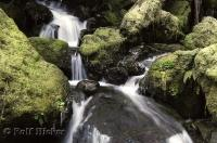 The Merriman Falls situated in the Olympic National Park in Washington makes for a beautiful waterfall photo.