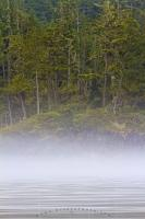 A band of fog blurs the waterline along the forested coastline of British Columbia, adding an air of mystery.